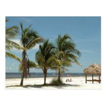 Playa solitaria en la playa la Florida de fuerte M Tarjeta Postal