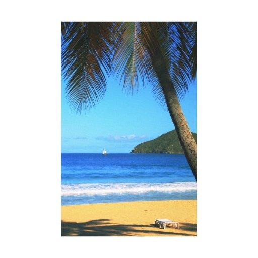Playa sombreada palma de la isla caribeña lona envuelta para galerias