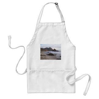 Playa Sur grande, CA de Pfeiffer Delantal
