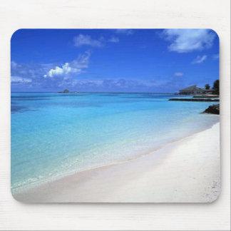 Playa Tapete De Ratones