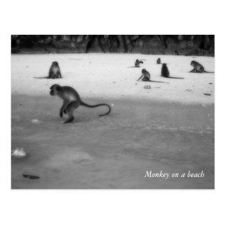 Playa Postal