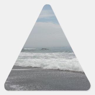 Playa Tejas de Surfside Pegatina Triangular