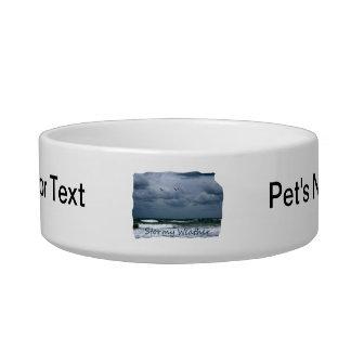 Playa tempestuosa con el texto de la imagen de las tazón para comida gato