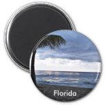 Playa tempestuosa, la Florida Iman De Nevera