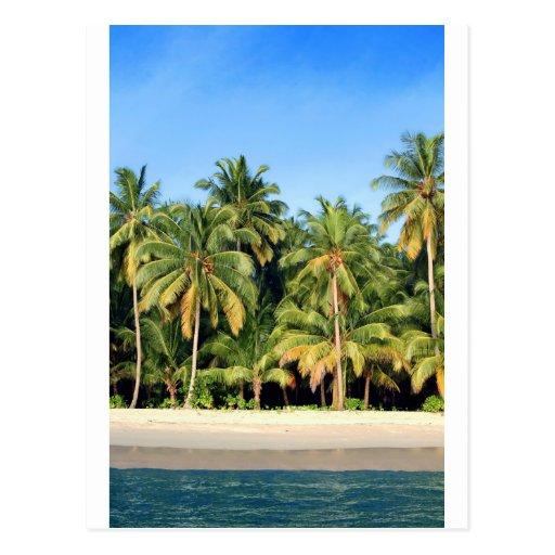 Playa tropical abandonada de la isla