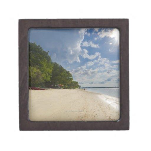 Playa tropical con salida del sol cajas de regalo de calidad