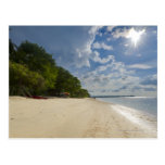 Playa tropical con salida del sol postal