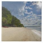 Playa tropical con salida del sol tejas  ceramicas