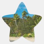 Playa tropical de Sandy