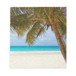 Playa tropical del paraíso bloc