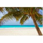 Playa tropical del paraíso escultura fotografica