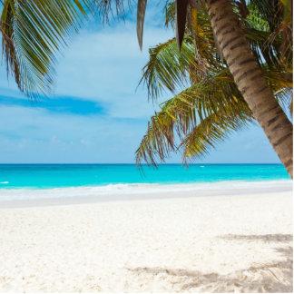 Playa tropical del paraíso fotoescultura vertical