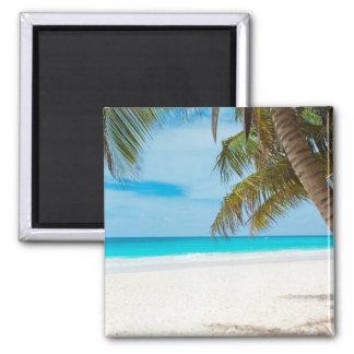 Playa tropical del paraíso imán cuadrado