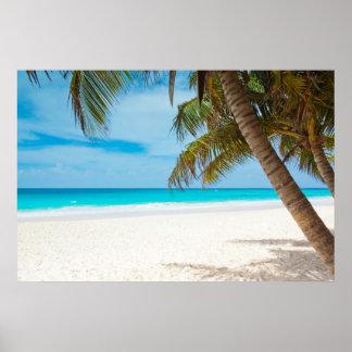 Playa tropical del paraíso poster