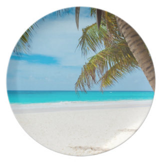 Playa tropical del paraíso platos de comidas