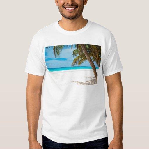 Playa tropical del paraíso playera