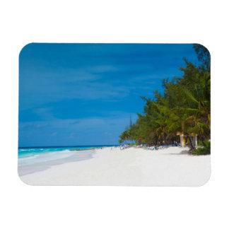 Playa tropical en Barbados Imán Foto Rectangular