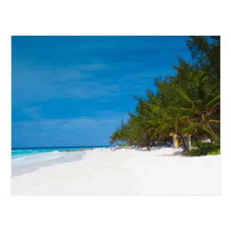 Playa tropical en Barbados Tarjeta Postal
