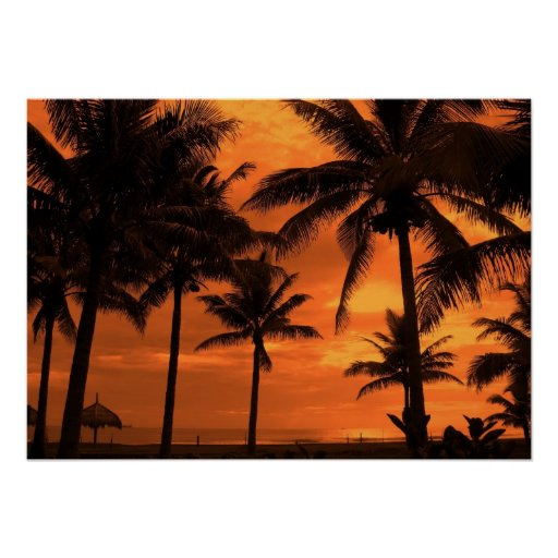 Playa tropical en la puesta del sol impresiones