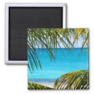 Playa tropical enmarcada con las frondas de la iman de nevera