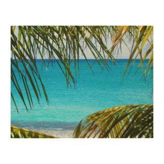 Playa tropical enmarcada con las frondas de la cuadros de madera
