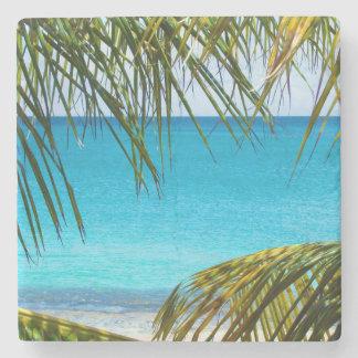 Playa tropical enmarcada con las frondas de la posavasos de piedra