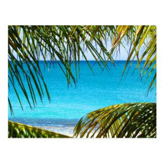Playa tropical enmarcada con las frondas de la postales