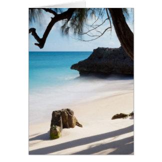 Playa tropical felicitacion