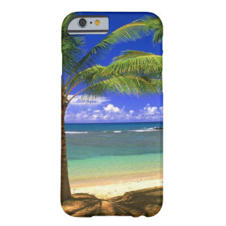playa tropical funda de iPhone 6 barely there