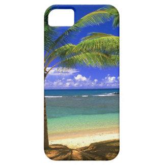 playa tropical iPhone 5 carcasas