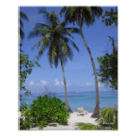 Playa tropical impresiones