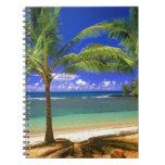 playa tropical libros de apuntes con espiral