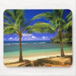 playa tropical mousepads
