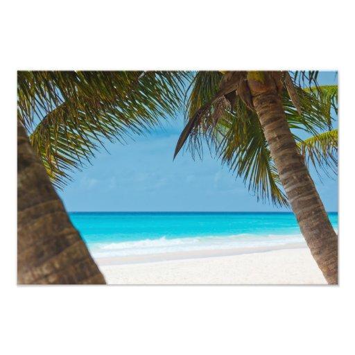 Playa tropical perfecta del paraíso cojinete