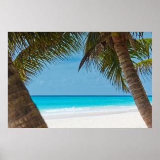 Playa tropical perfecta del paraíso posters