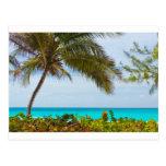 Playa tropical postal