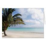 Playa tropical tarjetas