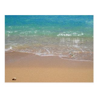 Playa tropical - Waikiki, Oahu, Hawaii Tarjeta Postal
