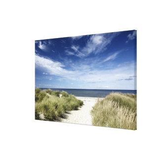 Playa, Welfleet mA Impresión En Lona