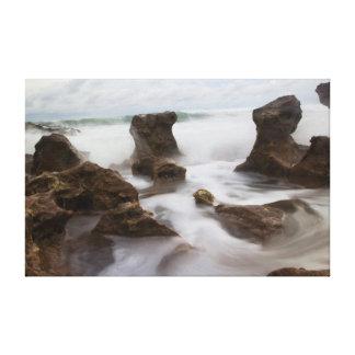 Playa y ondas coralinas del parque de la ensenada lona envuelta para galerías