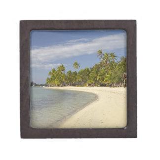 Playa y palmeras, centro turístico isleño 2 de la  caja de recuerdo de calidad