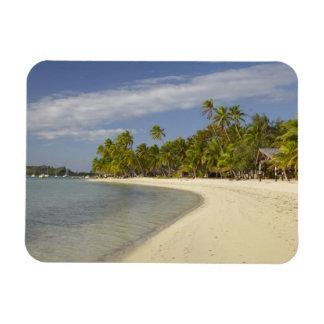 Playa y palmeras, centro turístico isleño 2 de la  imán