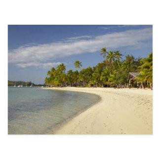 Playa y palmeras, centro turístico isleño 2 de la postal