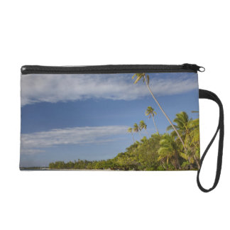 Playa y palmeras, centro turístico isleño de la pl