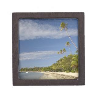 Playa y palmeras, centro turístico isleño de la pl caja de regalo de calidad