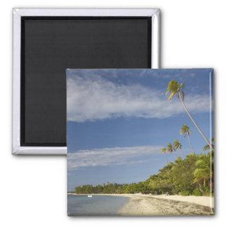 Playa y palmeras, centro turístico isleño de la pl imanes para frigoríficos