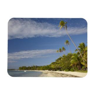 Playa y palmeras, centro turístico isleño de la pl iman flexible