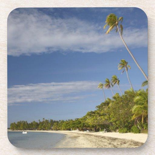 Playa y palmeras, centro turístico isleño de la pl posavasos