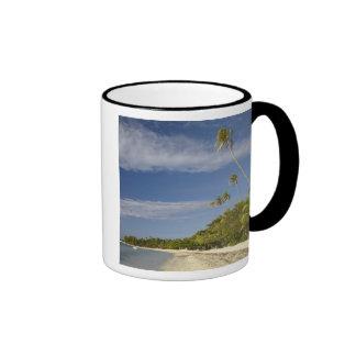 Playa y palmeras, centro turístico isleño de la pl taza de café