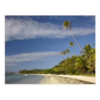 Playa y palmeras, centro turístico isleño de la postal